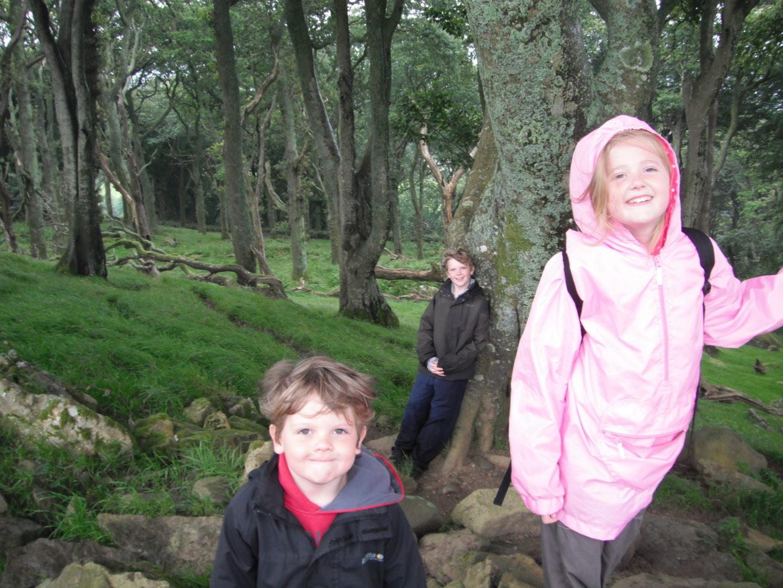 Neva, kaide and Lochlan smiling on their woodland walk