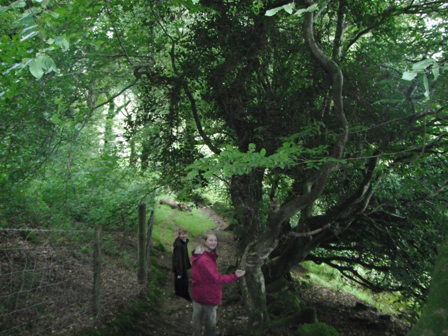 Xene and Lochlan going deeper into the trees on woodland walks