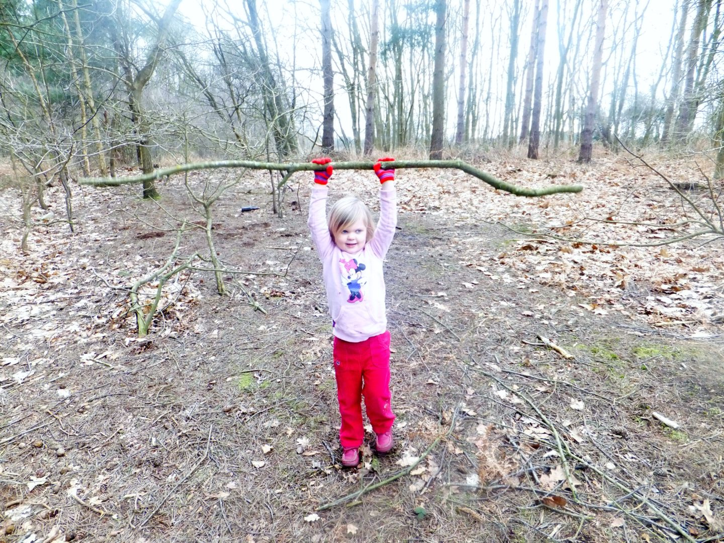 Eown loves collecting giant sticks on woodland walks