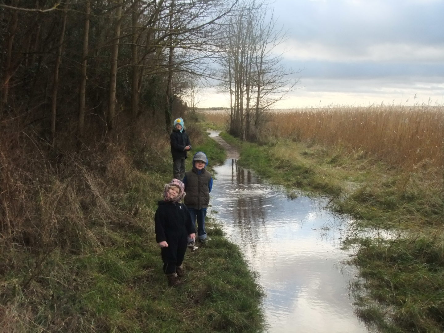Eowyn, Kaide and Lochlan navigating puddles on a wet woodland walk
