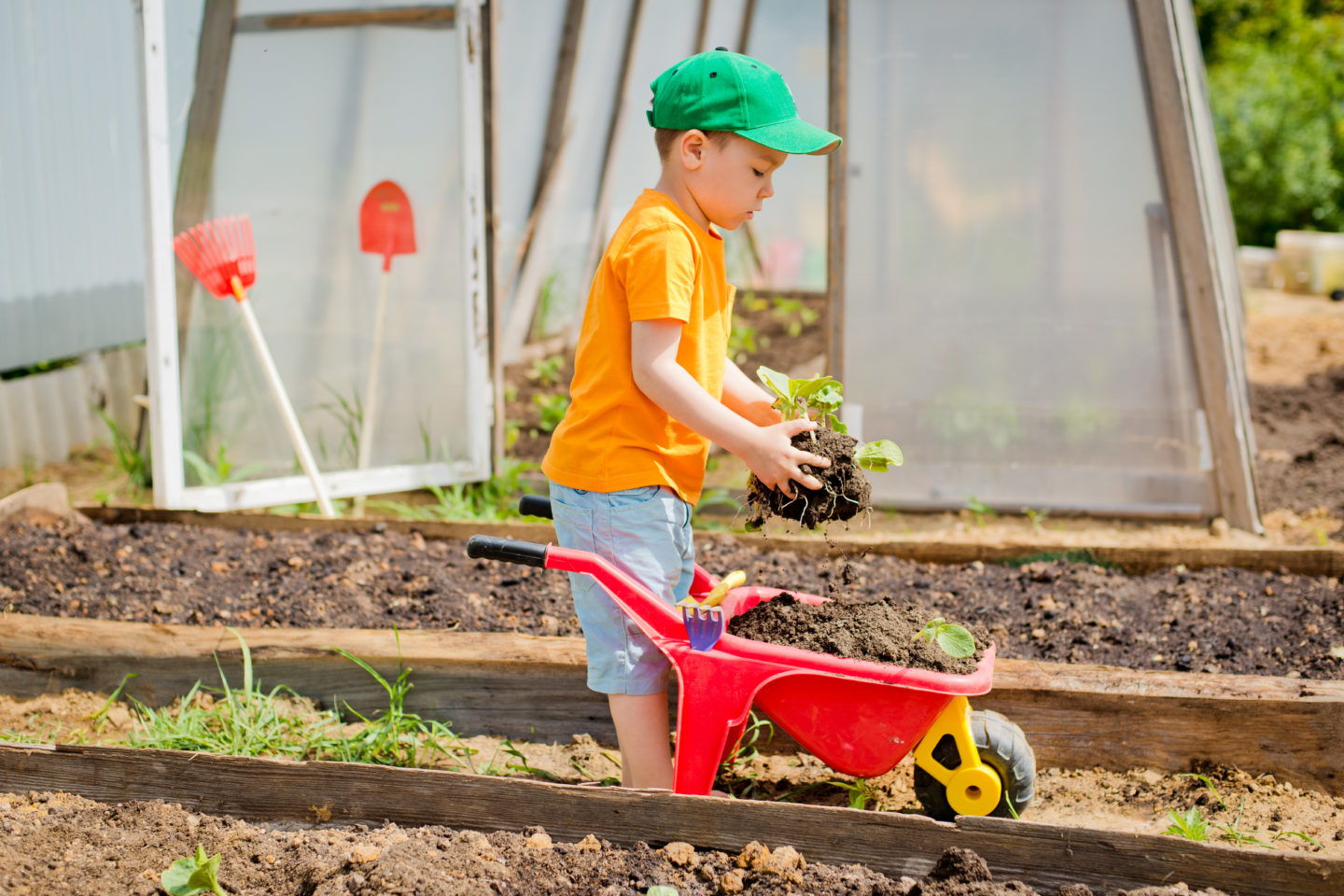 Fun Outdoor Activities: Spend More Time with Your Kids A Rainbow Garden