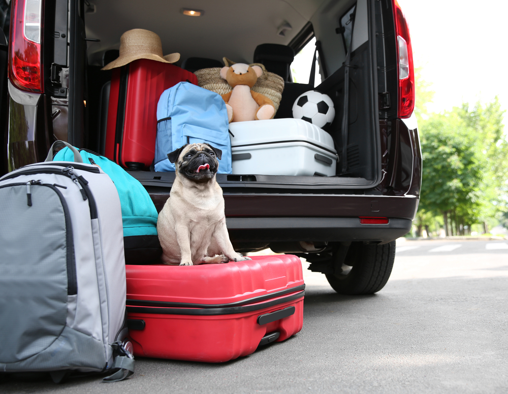 Are You and Your Car Ready For Travel ?
