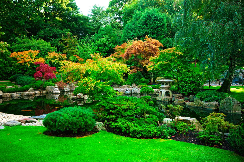 4 Amazing Hidden Tourist Spots in London Kyoto Gardens