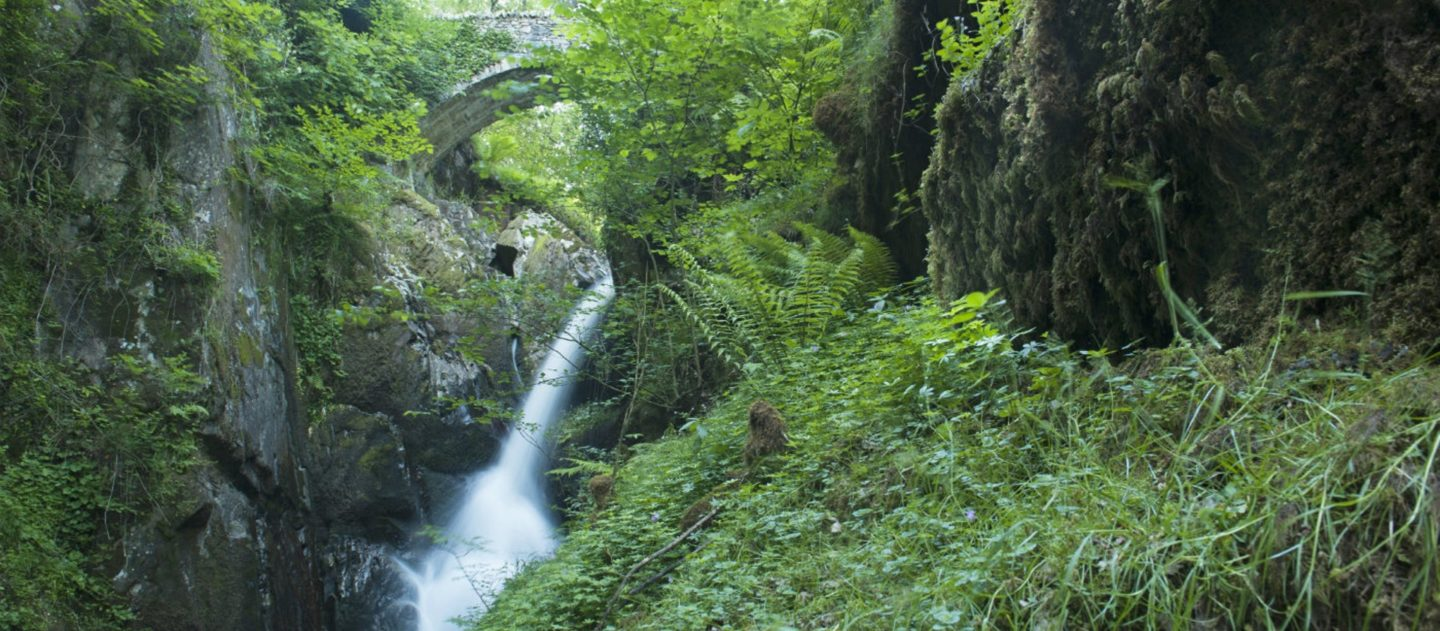 Things To Do in Lake District - Aira Force